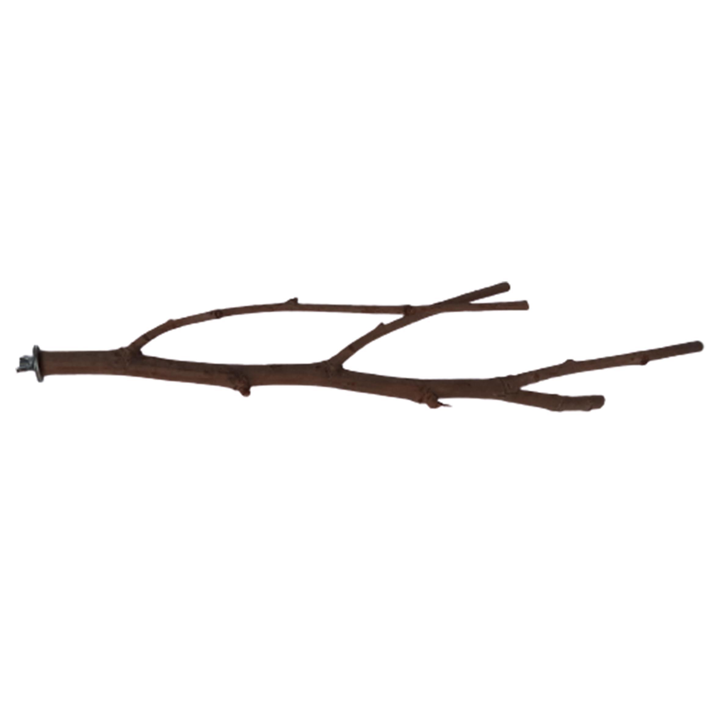 چوب طبیعی قناری